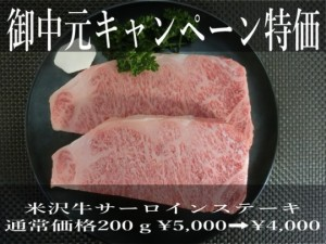 waga-0083