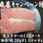 waga-0091